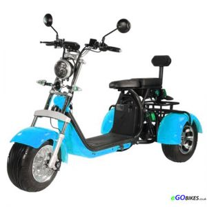 eGO Road Legal Electric Trike